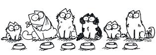 alimenti-per-gatti