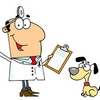 Consulenza Veterinaria on line