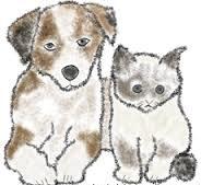 rimedi-cure-naturali-rachitismo-gatto-e-cane