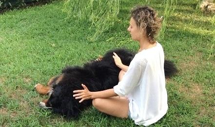 trattamento-reiki-cane