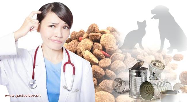perchè i Veterinari NON Mangiano Crocchette