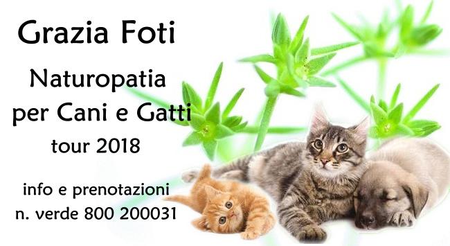 Seminario Naturopatia Animali
