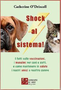 shock_al_sistema
