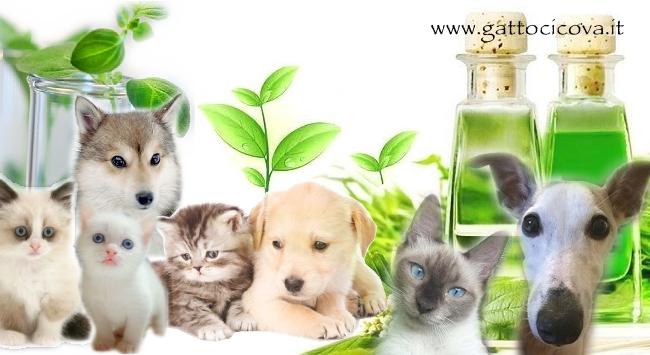 Naturopatia per Animali