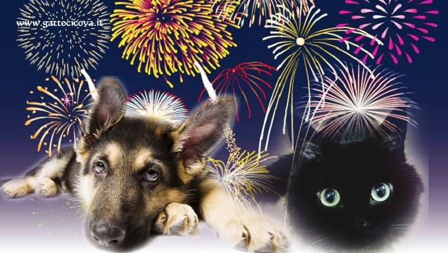 Cani e Gatti i Botti di Capodanno