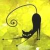 MSM nel Gatto
