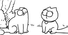 gatto-in-calore