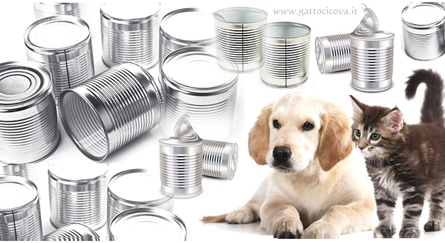 Intossicazione da Alluminio nel Gatto e Cane