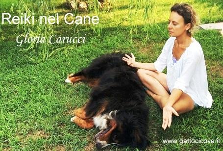 gloria-carucci-reiki-nel-cane