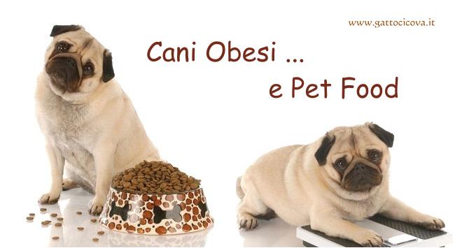 Obesità nel Cane