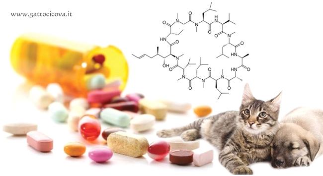 Ciclosporina nel Cane e Gatto
