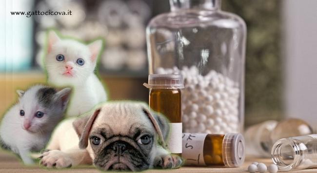 Alumina nel Cane e Gatto